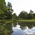 Visit the Jackson House Pond in July