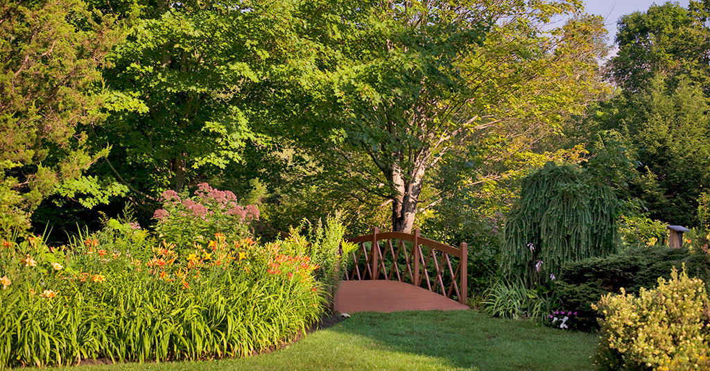 Our garden footbridge that leads to our freshwater pond